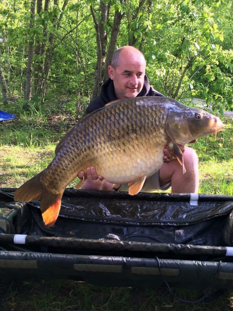 Part of a 29 fish haul for Gary Archer!