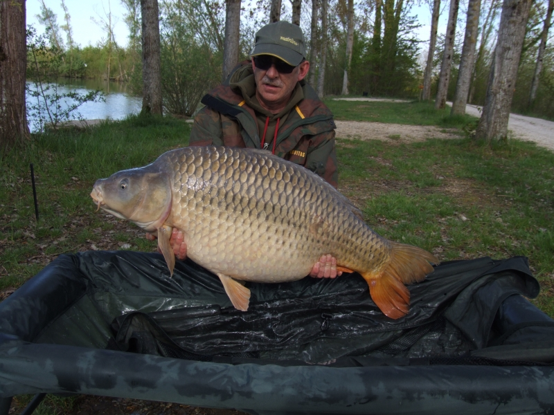 Paul Gillett: 50lb