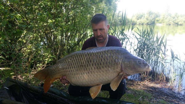 Stuart Carpenter: 50lb