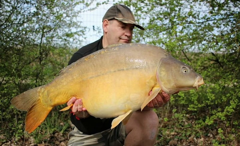 Nigel Sealey 41lb Lk2