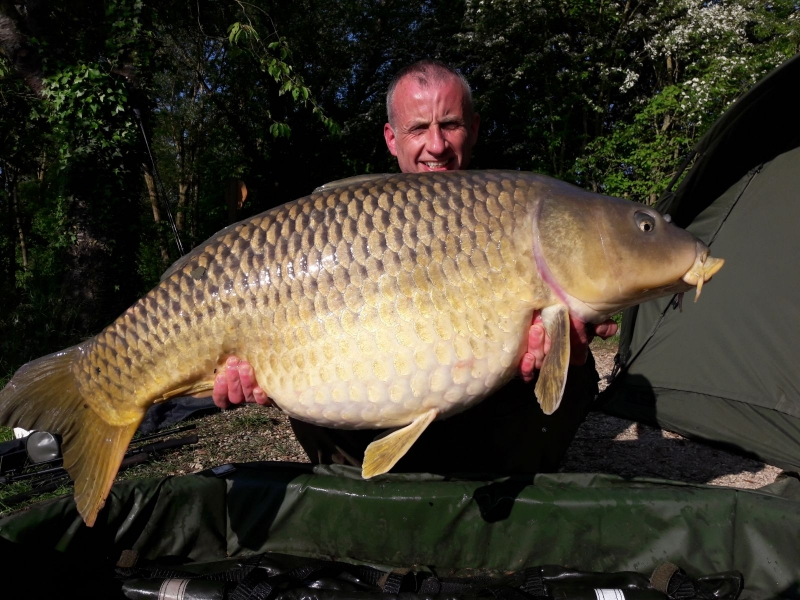 Scott McGregor 51lb