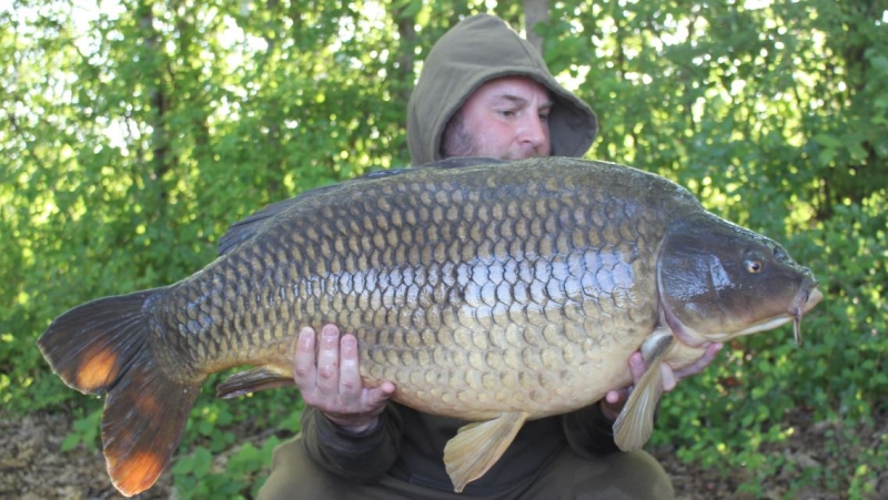Peter jeffro Alderton 43lb