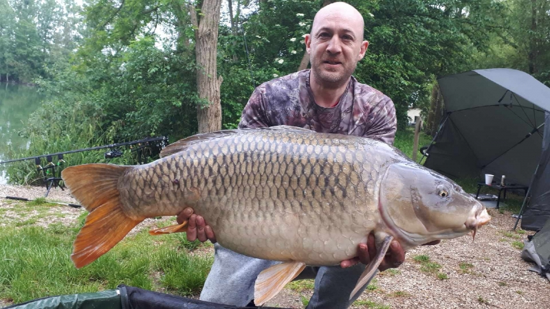 Clive Pelser 45lb common