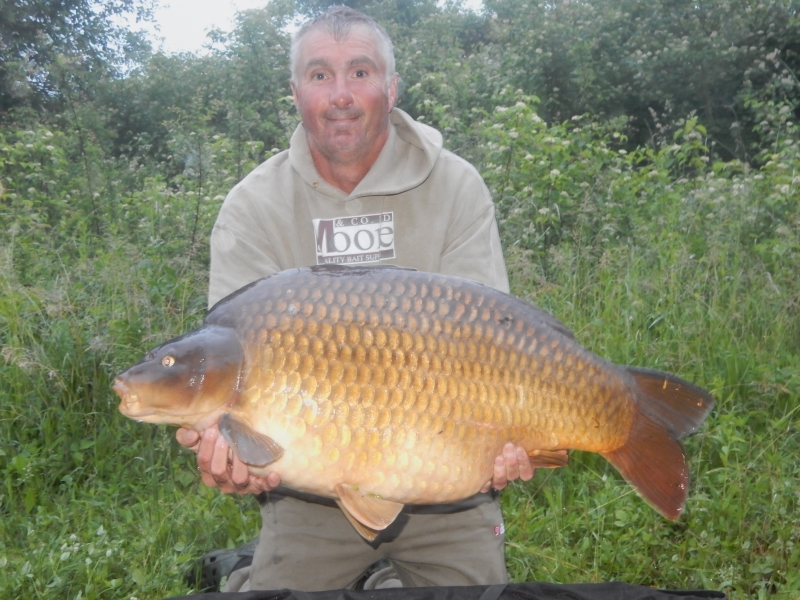Paul Dawson 28lb common
