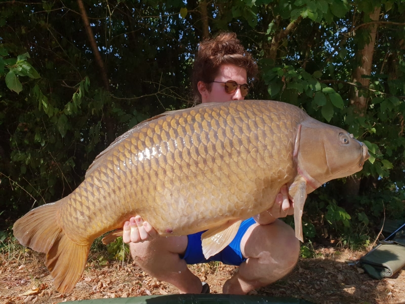 Sam Meredith 50lb common