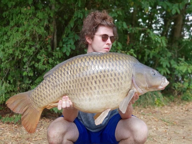 Sam Meredith 51lb common