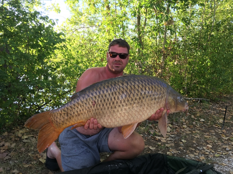 Mark Wright 45lb common