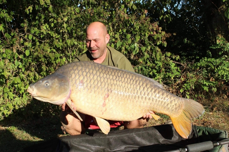 Kev Greenwood 75lb VENUS