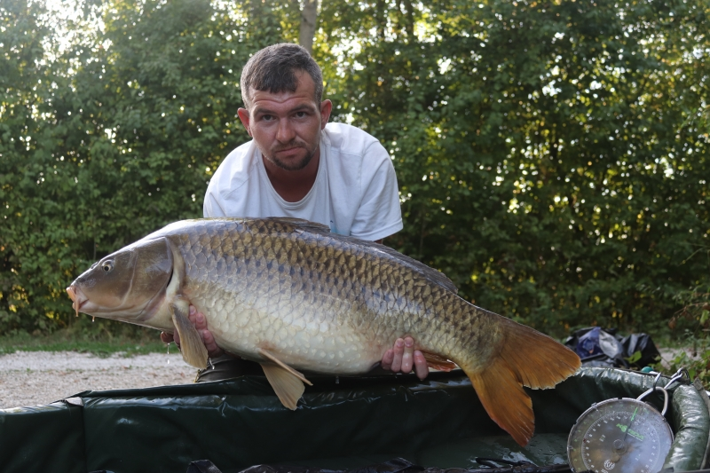 Mike Page 36lb common