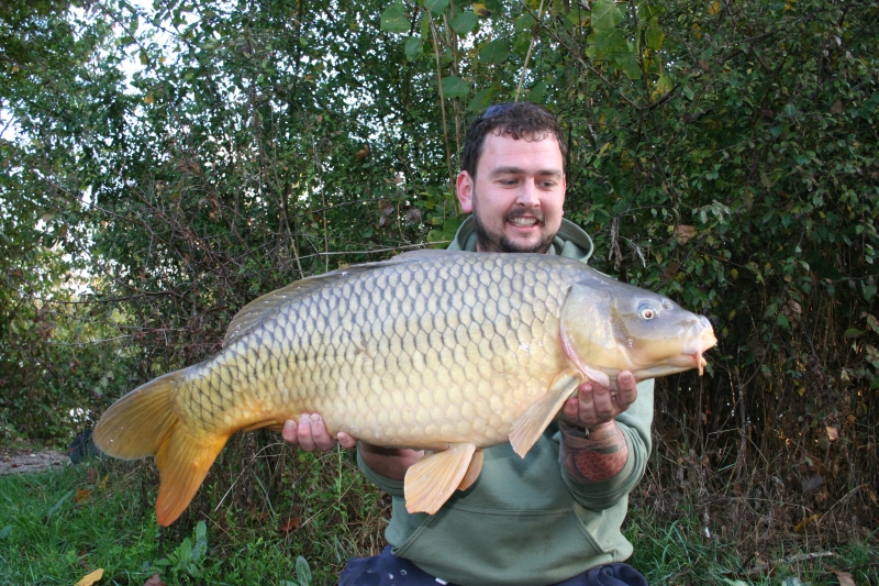 Jacob 36lb common