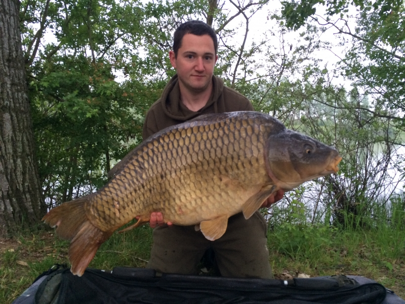 Tommy Moore: 50lb