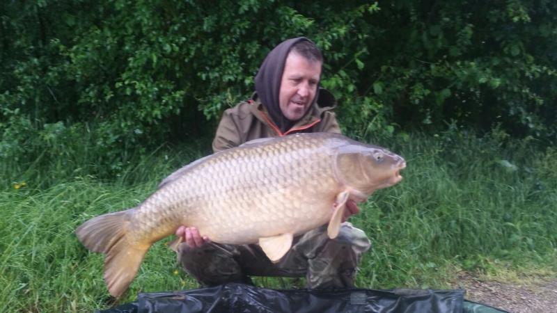 Stuart Carpenter 40lb