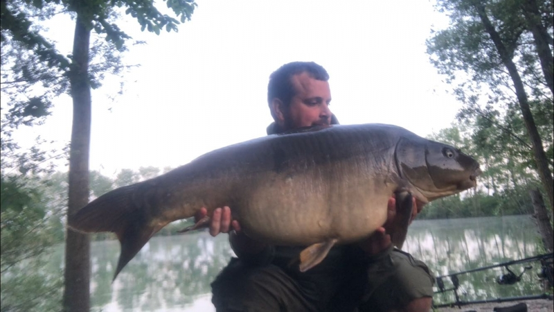 Simon Johns 36lb