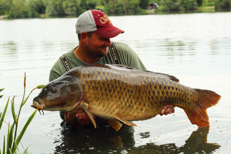 Lee Griffin 50lb common