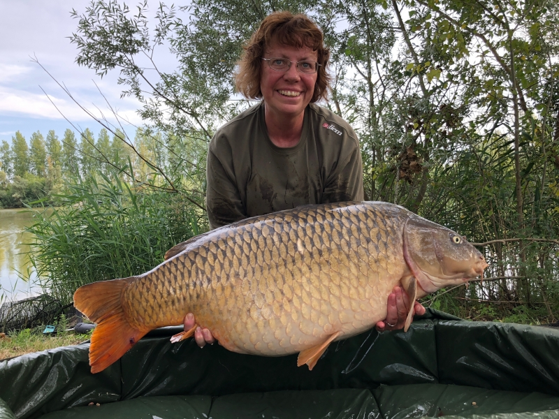 Anne Marie Smith 49lb common