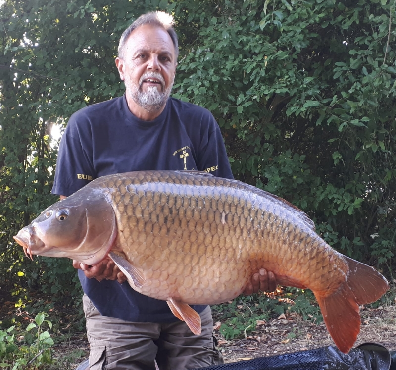 Andrew French 52lb