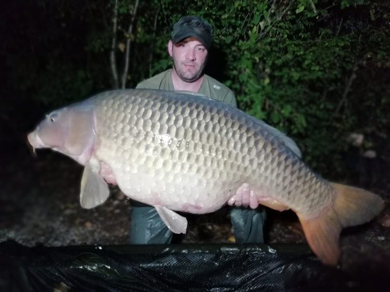 Pete Ingham 61lb Common