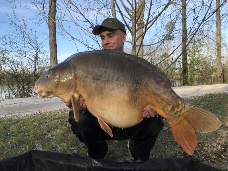 Perry Alabaster 44lb