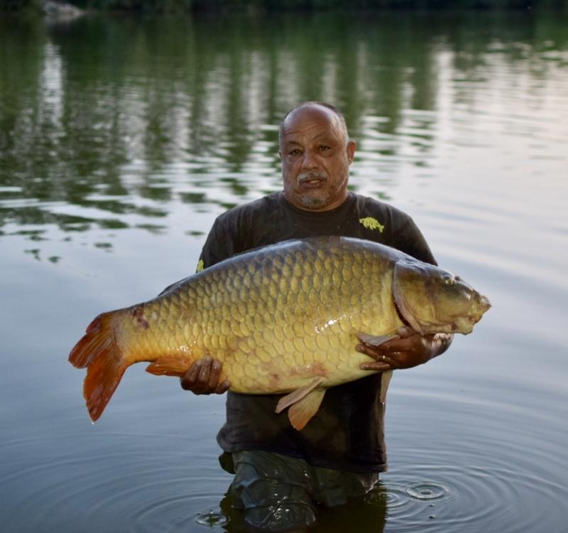 Shane Barnum 55lb common